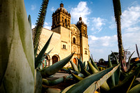 More from Oaxaca & around the world
